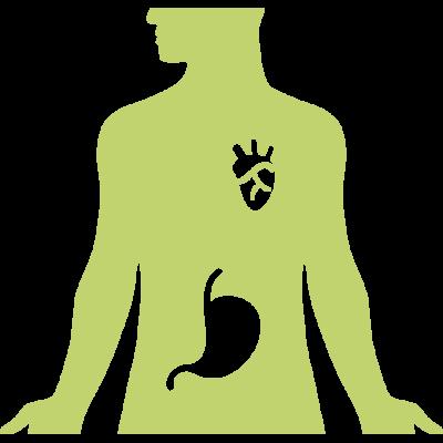 digestive-system-1